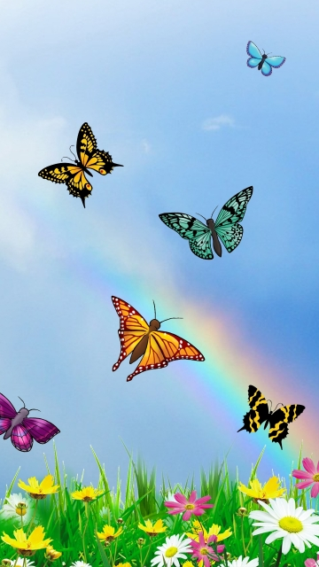 Colorful Butterflies Flying Over Spring Meadow Hd Image