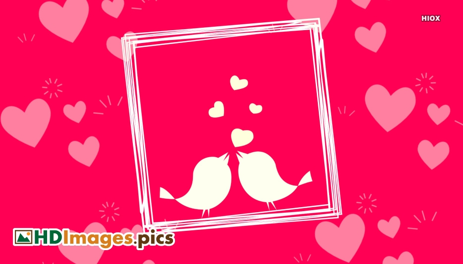 Hd Images Love Birds