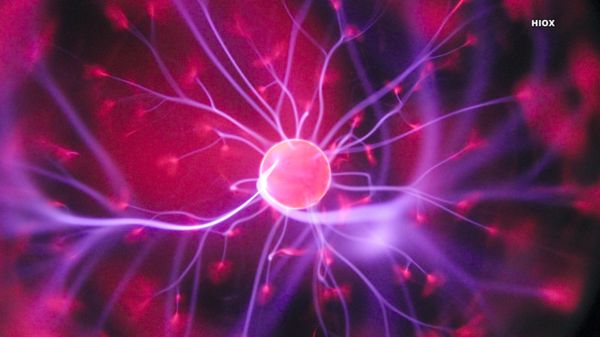 Purple And Pink Plasma Ball Picture