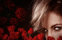 Sexy Eyes with Lovely Red Roses HD Wallpaper