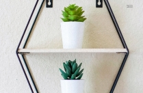Green Plants In A White Ceramic Pot On A Metal Rack Hd Photo