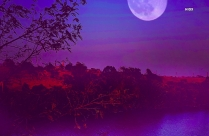 Water Under Full Moon HD Background