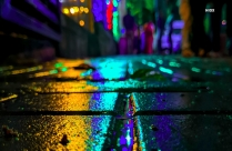 Wet Road Reflecting Colorful Street Light Hd Photo